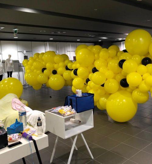 Organische balloninstallatie